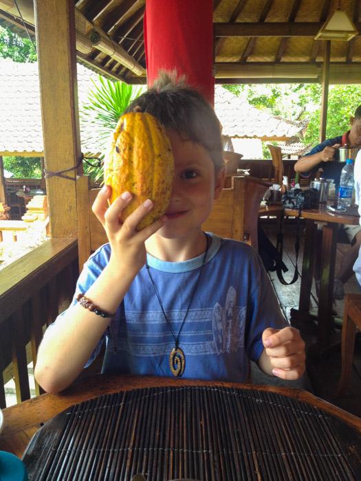Мальчик с плодом какао