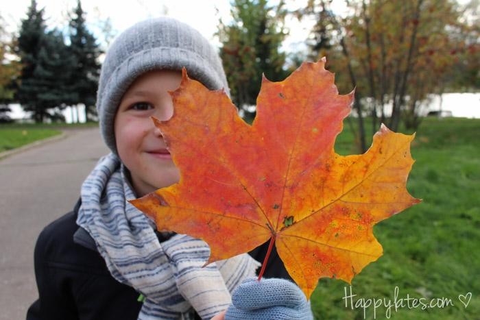Димка с осенними листьями, осенние листья, осень в парке 850 летия